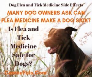 adverse reaction to flea and tick medicine